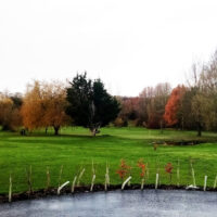 Update from Town Meadow Golf Club